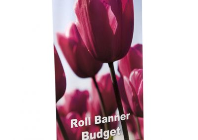 Rollbanner Budget